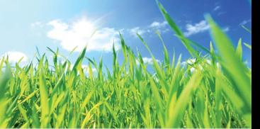 rigola clean - avantaje pentru mediul inconjurator